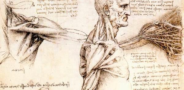 肩脱臼の手術
