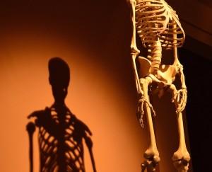 骨盤矯正だけじゃ整体の効果は無い!その理由を教えます。